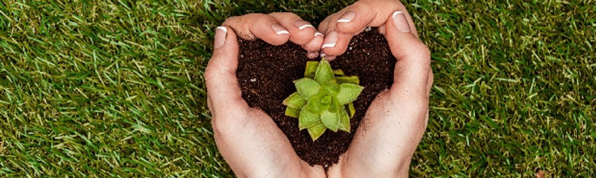 10 tipp a környezettudatosabb élethez