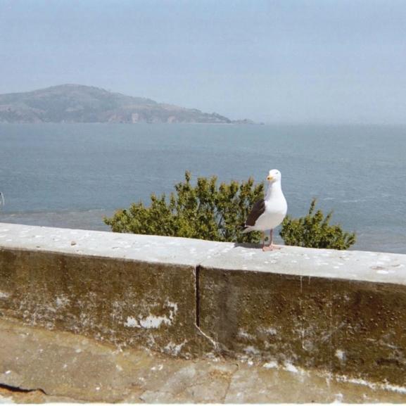 A világ egyik legkegyetlenebb börtönében jártam – Ilyen az Alcatraz belülről az asztrológus szemével!