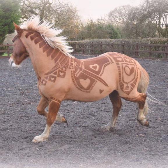 Állati új trend hódít: itt a lófodrászat