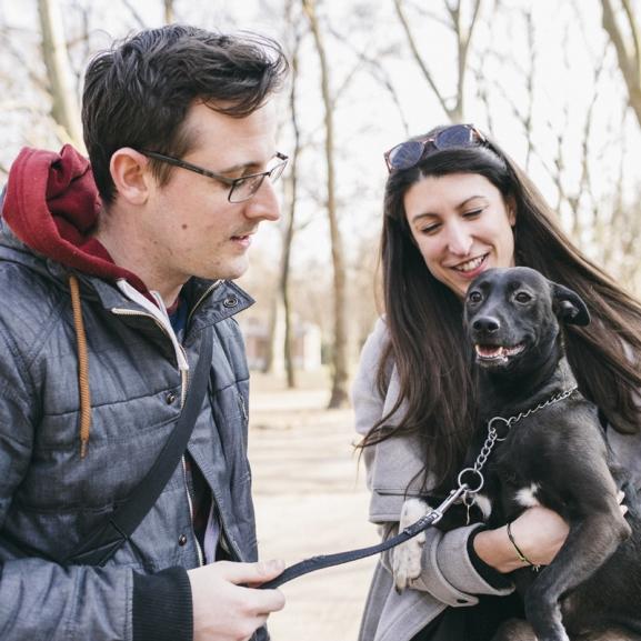 Kutyabolondok, így kereshettek pénzt mosolyogva! – Elsőként teszteltük a DogSurföt