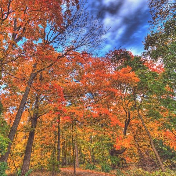 Az 5 legjobb dolog, amit ősszel csinálhattok