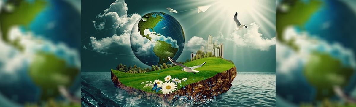 7+1 tévhit a szelektív hulladékgyűjtésről