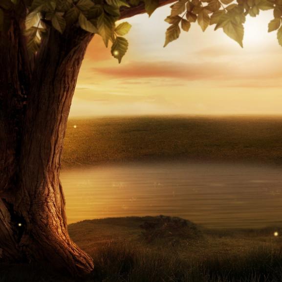 background-image-3507320_1920