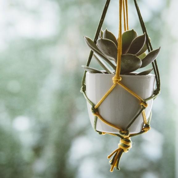 Bohém sikk – Inspirálódjatok a hippidivatból, és készítsetek makramé növénykaspót Mojzes Nóra