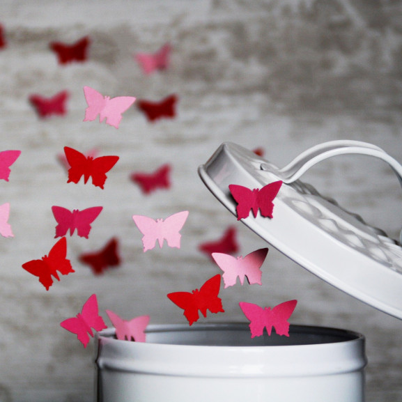 butterfly-4061336_1920