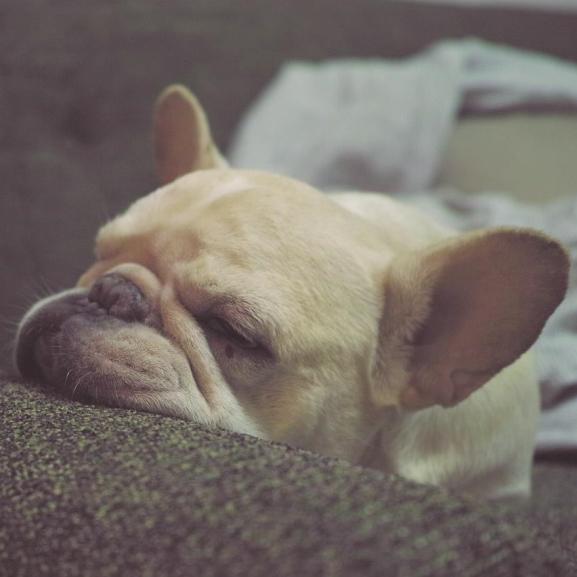 Nem az órák számítanak, csak 5 dolog kell a pihentető alváshoz