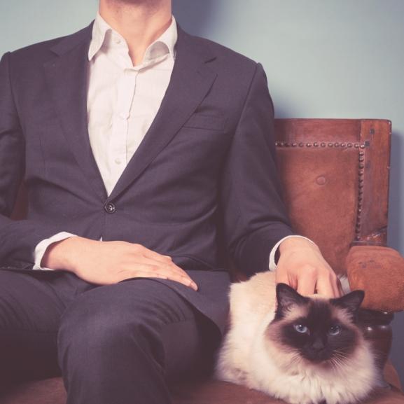 A macskafajta férfiak és a párkapcsolat nehézségei