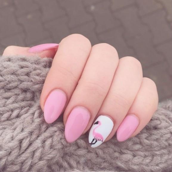 flamingo-korom-minta-divat