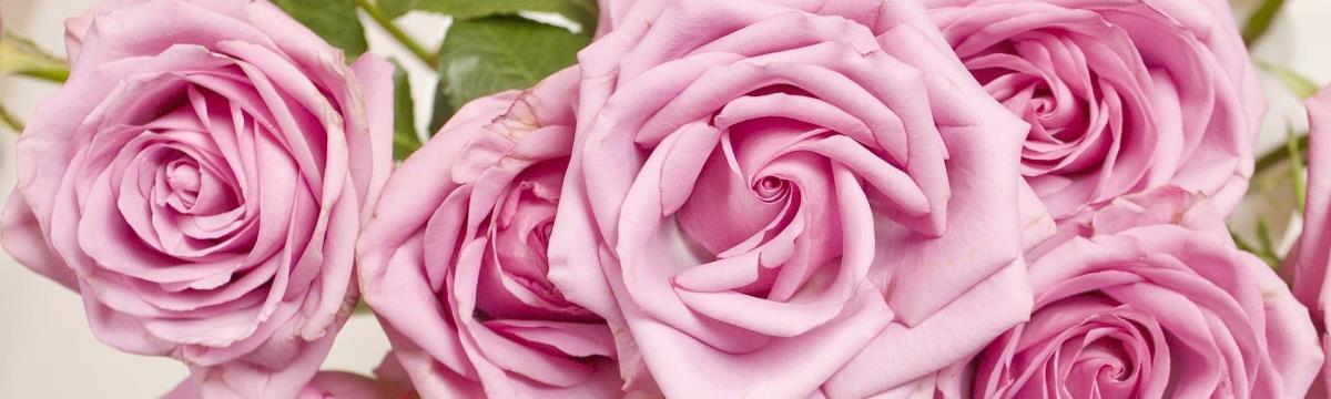 Csokorcsodák esküvőre: a legtrendibb virágköltemények idén