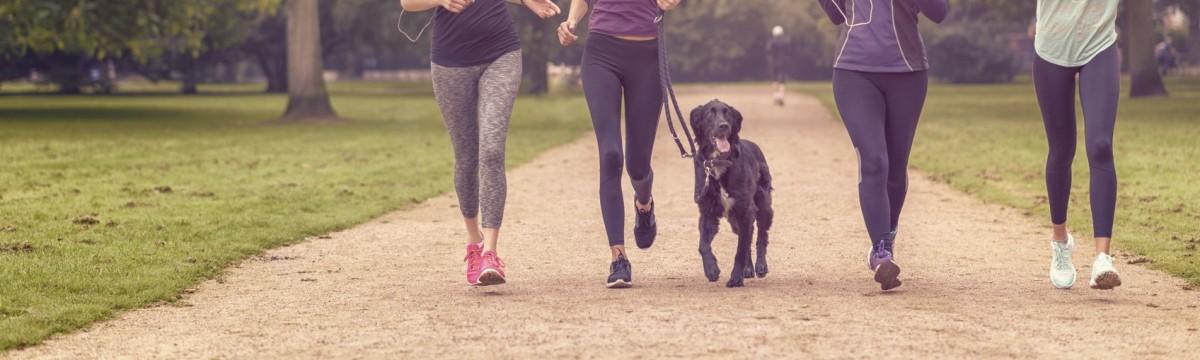 futás kutya barátnők program