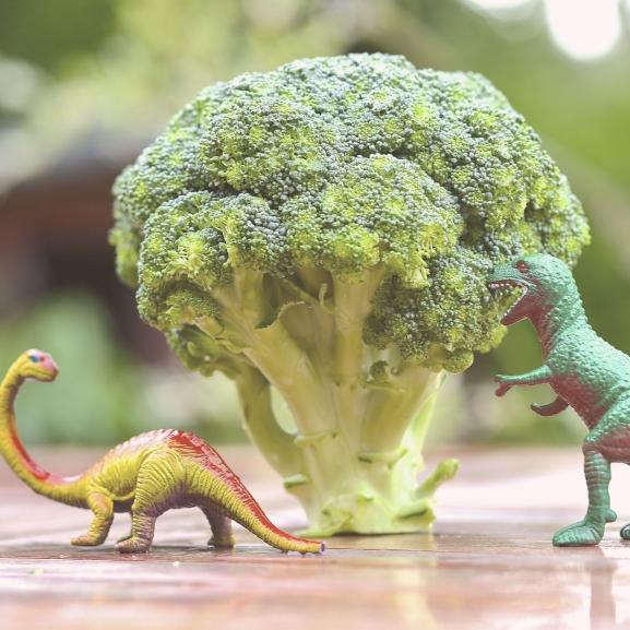 Amit nem mindenki nő ki: dinómánia – az ovitól egészen a tetkókig