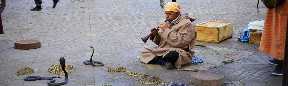 Amikor tök jól vagy, mégis sárkányfűárust és kígyóbűvölőt látsz