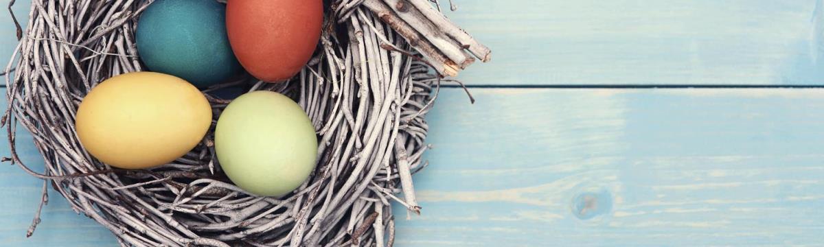 Fő a természetesség! – Tojásfestés fűszerekkel