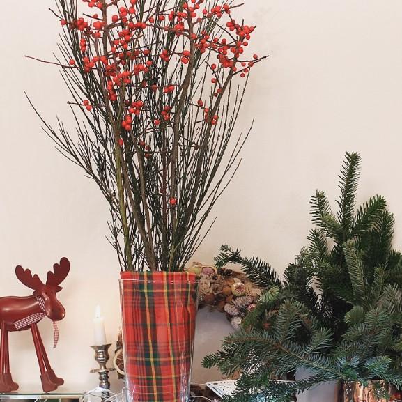 Karácsonyi dekoráció növényimádóknak – NORIE-videó Takács Nóra