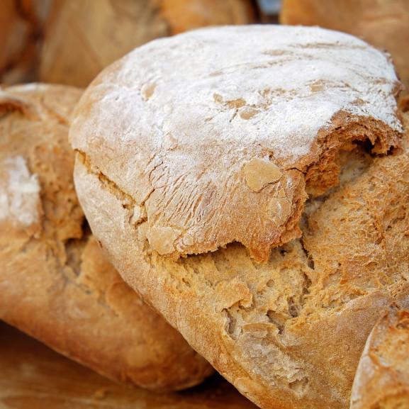 kenyérteszt