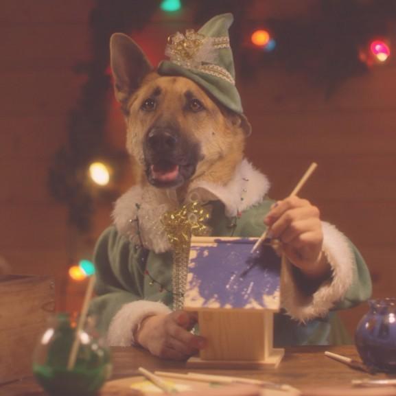 kutya karácsonyi reklám