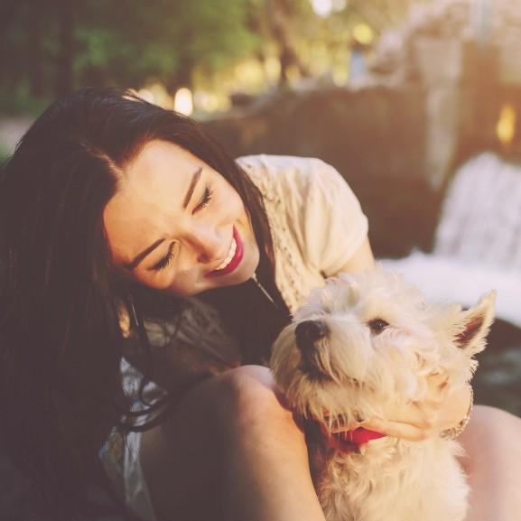 lany-mosoly-kutya