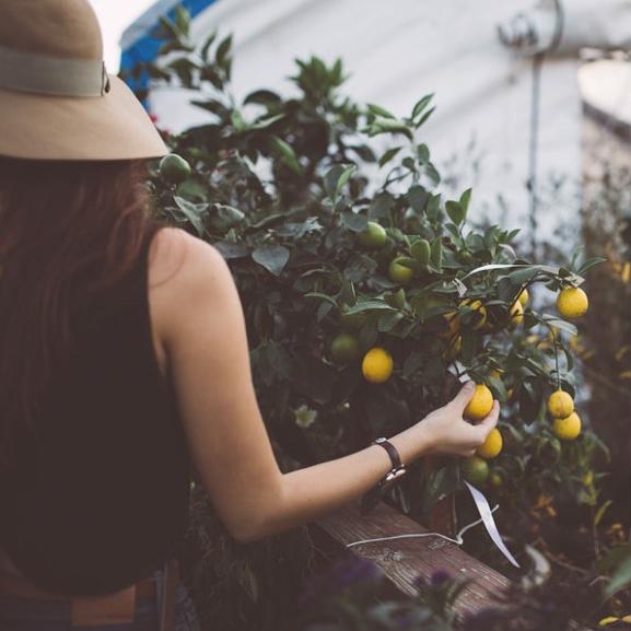17 apróság, amitől 2016-ban egészségesebbek lesztek