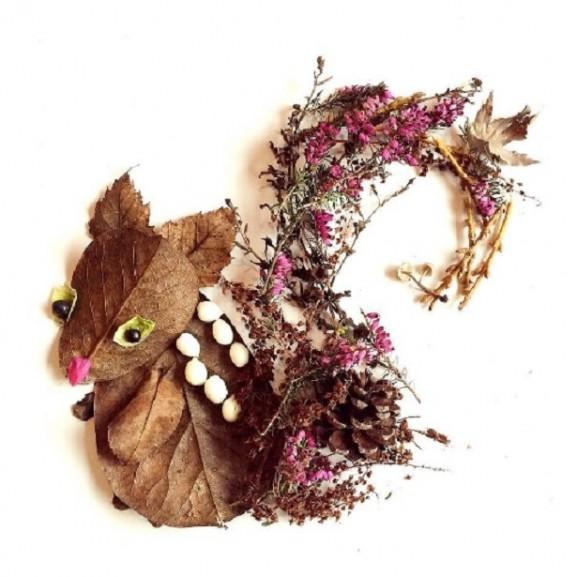 művészet virág mókus