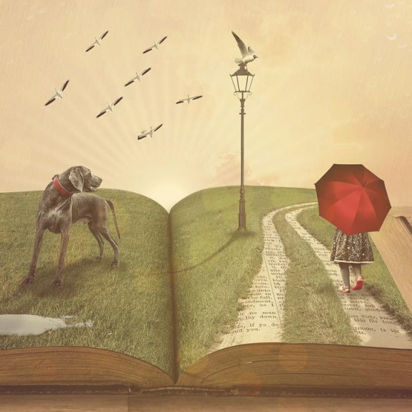 Rendhagyó könyvajánló: ti mutattátok meg, mit érdemes olvasni