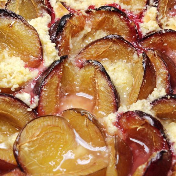 plum-cake-3641851_1920