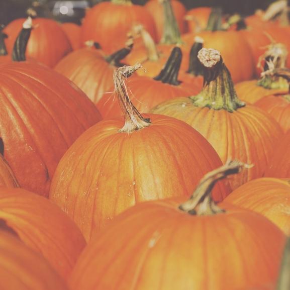 Szépüljetek sütőtökkel – A legjobb őszi csodaszer