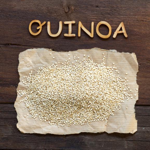 Quinoa 577x577 (10)