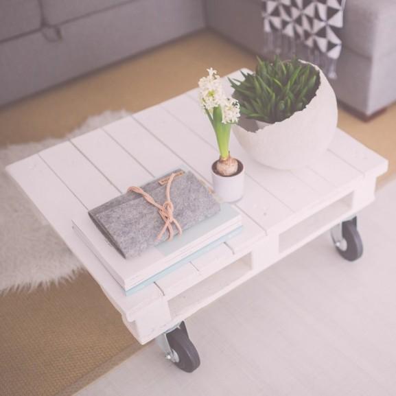 raklap asztal szoba virág növény padló