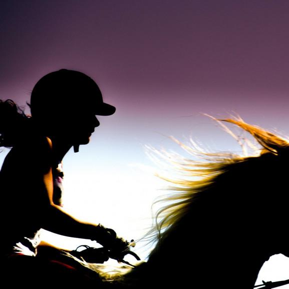 rider-197056_1920