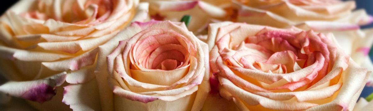Viszlát, romantika, helló, vagányság! – Valentin-nap, kicsit másképp