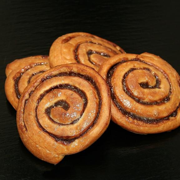 snail-1581488_1920