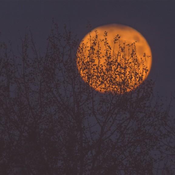telihold holdfogyatkozás