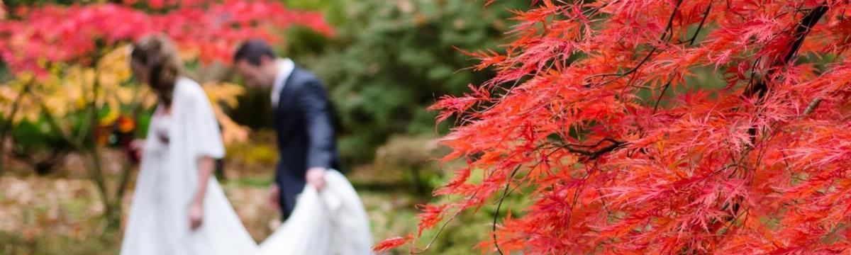 Ötszörös áron árulják menyasszonyi ruhaként a szalagavatósat