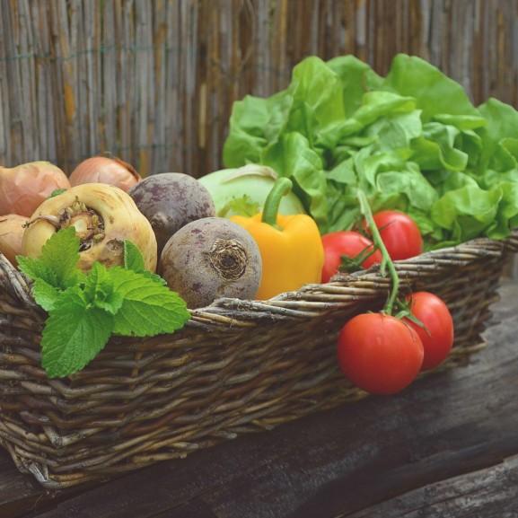 zöldségek vegetáriánus