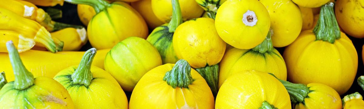 zucchini-1513112_1920