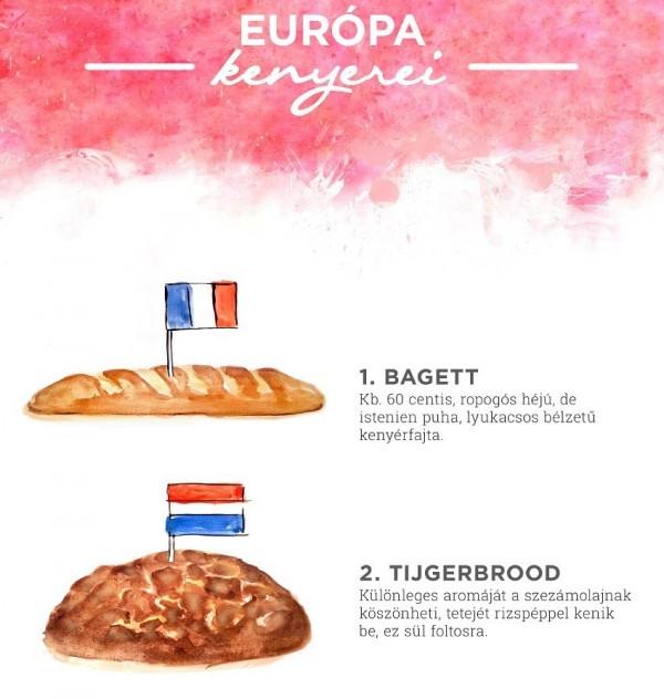 európa kenyerei infografika