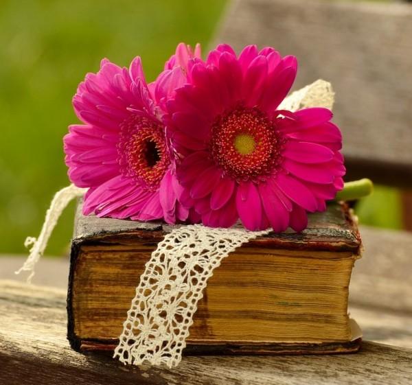 gerbera könyv virág