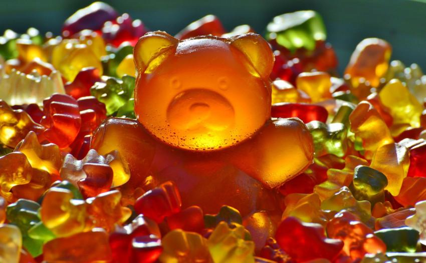 giant-rubber-bear-1089612_1920