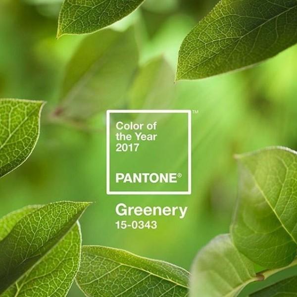 Így viseljétek 2017 színét, a lombkoronazöldet! Sarkadi Nikolett