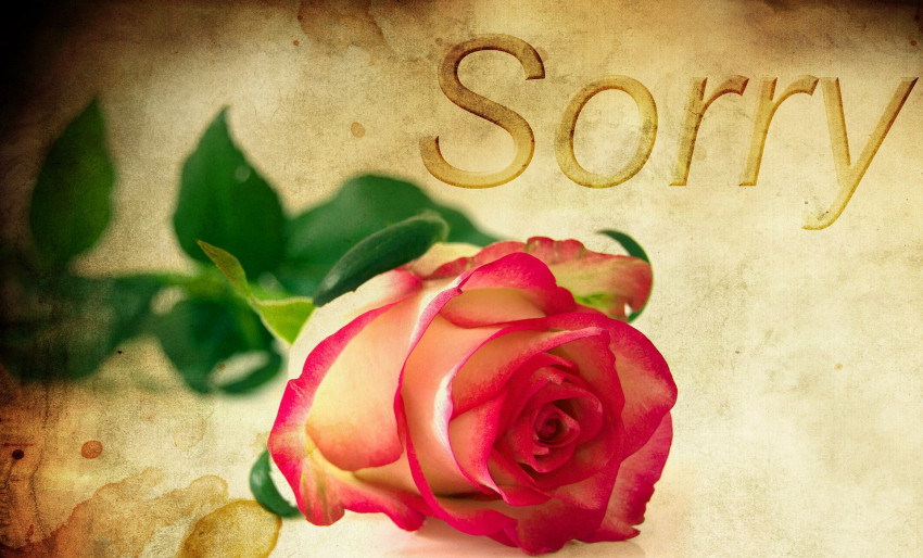 rose-1271216_1920